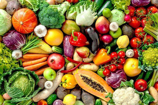 راهنمای کامل تغذیه دونده ها